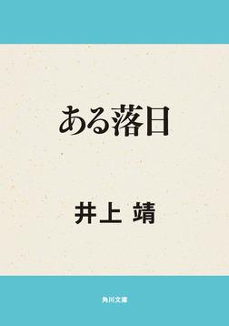 ある落日-電子書籍