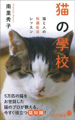 猫の學校 猫と人の快適生活レッスン-電子書籍