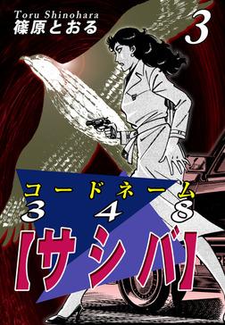 コードネーム348【サシバ】(3)-電子書籍