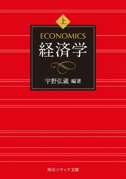 経済学 上巻-電子書籍