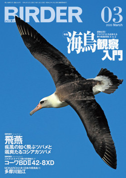 BIRDER2020年3月号-電子書籍