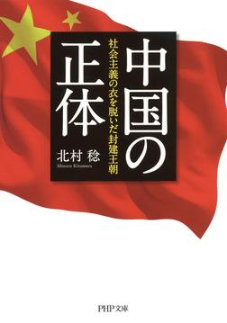 中国の正体-電子書籍