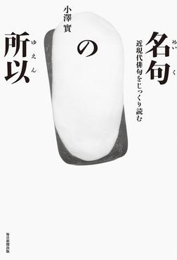 名句の所以(毎日新聞出版) 近現代俳句をじっくり読む 澤俳句叢書第二十四篇-電子書籍