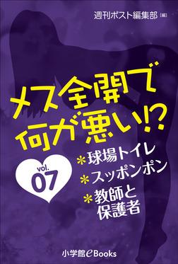 メス全開で何が悪い!? vol.7~球場トイレ、スッポンポン、教師と保護者~-電子書籍