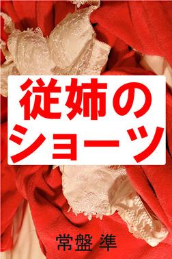 従姉のショーツ-電子書籍