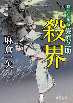将軍の影法師 葵慎之助 殺界-電子書籍