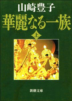 華麗なる一族(上)-電子書籍