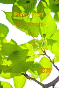 Pure Heart~葵とケンの物語~5