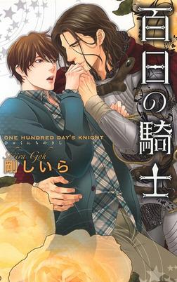 百日の騎士-電子書籍
