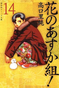 花のあすか組! (14)-電子書籍