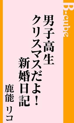 男子高生クリスマスだよ!新婚日記-電子書籍