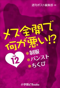 メス全開で何が悪い!? vol.12~制服、パンスト、ちくび~-電子書籍