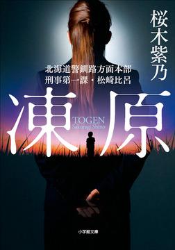 凍原 北海道警釧路方面本部刑事第一課・松崎比呂-電子書籍