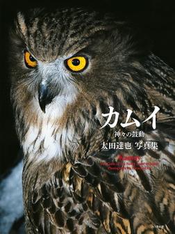 太田達也写真集 カムイ 神々の鼓動-電子書籍