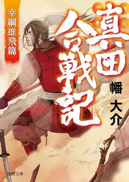 真田合戦記3 幸綱雄飛篇-電子書籍