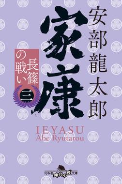 家康(三) 長篠の戦い-電子書籍