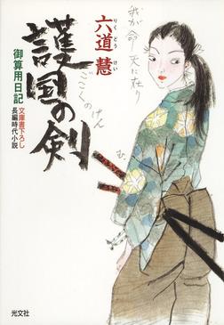 護国の剣~御算用日記~-電子書籍