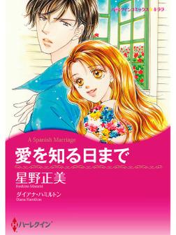 愛を知る日まで-電子書籍