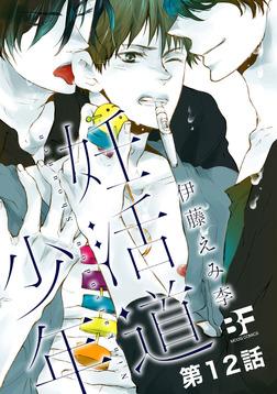 妊活道少年(分冊版) 12-電子書籍