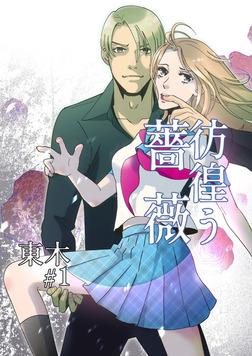 彷徨う薔薇 第1話-電子書籍