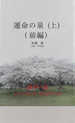 運命の泉 上 (前編)-電子書籍