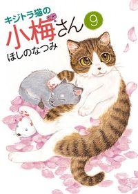 キジトラ猫の小梅さん(9)