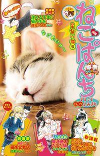 ねこぱんち 星祭り猫号 / No.154