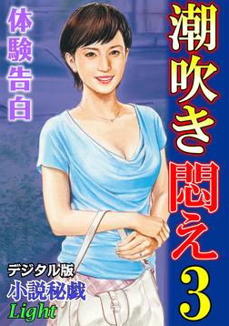 【体験告白】潮吹き悶え03 『小説秘戯』デジタル版Light-電子書籍