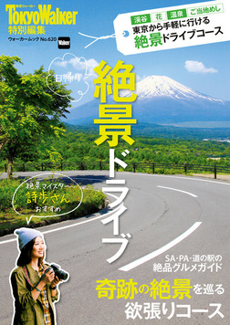 日帰り 絶景ドライブ-電子書籍