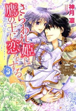 銀のセレイラ4 さらわれ姫は鷹の王に恋をする3-電子書籍