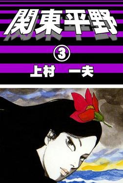 関東平野 (3)-電子書籍