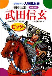 武田信玄 ビッグ版 戦国の猛将