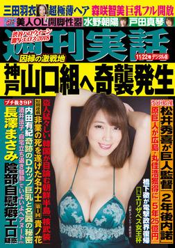 週刊実話 11月22日号-電子書籍
