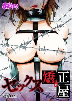 セックス矯正屋-電子書籍
