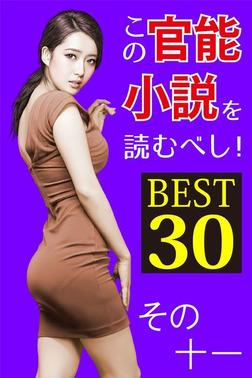 この官能小説を読むべし! BEST30 その十一-電子書籍