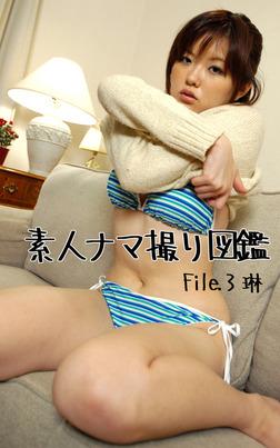 素人ナマ撮り図鑑 File.3 琳-電子書籍