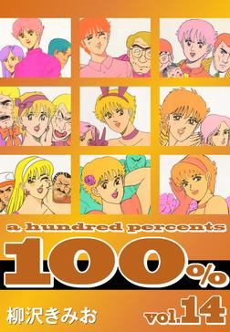 100%(14)-電子書籍