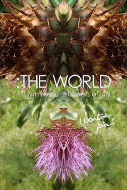 :THE WORLD - 「symmetry」 #flowers of july-電子書籍