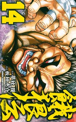 餓狼伝 14-電子書籍