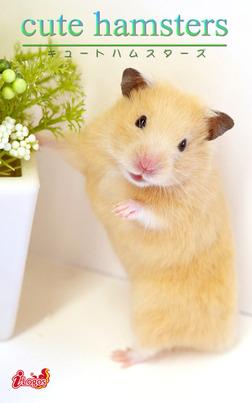 cute hamsters03 キンクマハムスター-電子書籍