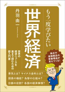 もう一度学びたい 世界経済-電子書籍
