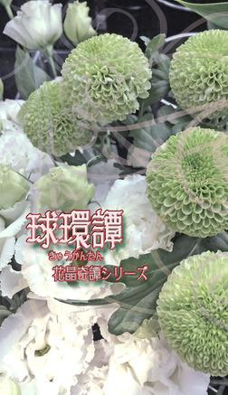 球環譚-電子書籍
