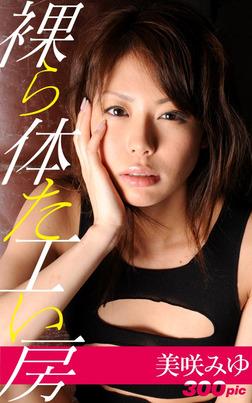 裸体工房【美咲みゆ】-電子書籍