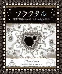 フラクタル 混沌と秩序のあいだに生まれる美しい図形-電子書籍