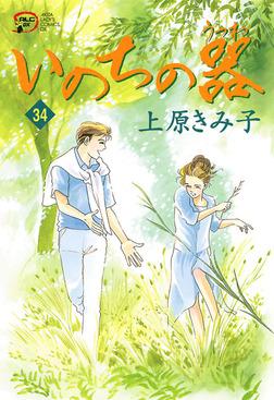 いのちの器 34-電子書籍