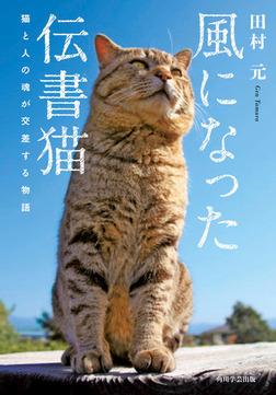 風になった伝書猫 猫と人の魂が交差する物語-電子書籍