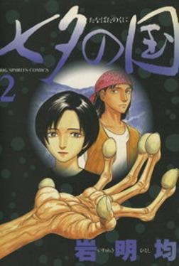 七夕の国(2)-電子書籍