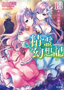 精霊幻想記 13.対の紫水晶-電子書籍