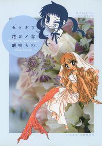 セトギワ花ヨメ(3)