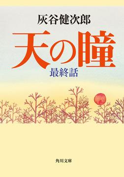 天の瞳 最終話-電子書籍